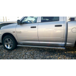 Dodge Ram 2009 - 2013 Quad Cab Painted Body Side Moldings (Shorter Rear Doors)